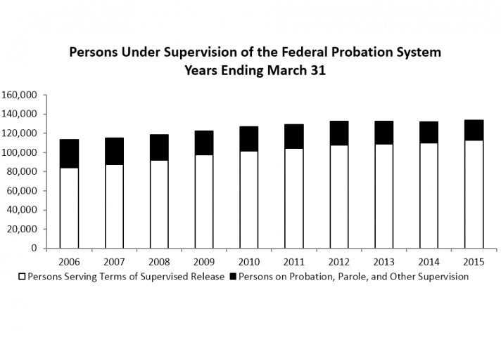 Persons Under Supervision of the Federal Probation System