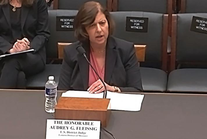Judge Audrey G. Fleissig testifies before the House Subcommittee on Courts, Intellectual Property, and the Internet