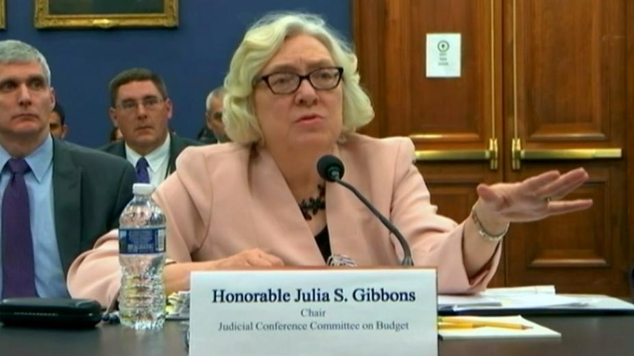 Image of Honorable Julia S. Gibbons