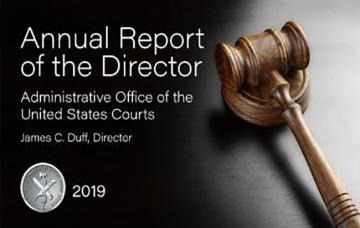 2019 Annual Report of the Director